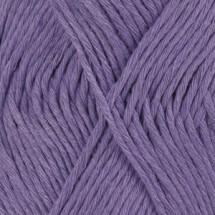 13 violet