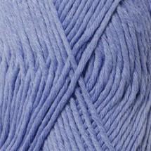33 blue bonnet