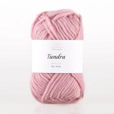 INFINITY Tundra